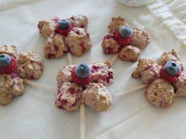 2 yaş sonrası çocuklar için yulaflı kurabiye