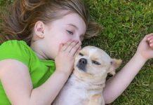 Evcil hayvanlar ve çocuklar hakkında bilinmesi gerekenler