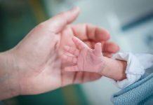Prematüre bebeklerde aşılama nasıldır?