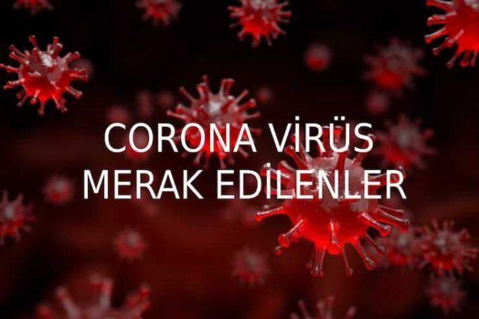 Corona virüs hakkında merak edilen soruları Prof.Dr.Mehmet Ceyhan yanıtladı