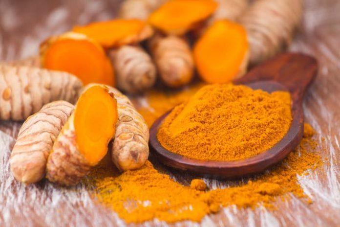 Corona virüse karşı etkili gıdalar konusunda yeni araştırma