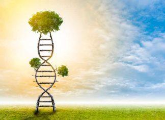 Çocukluk çağı olumsuz yaşantıları DNA'mıza işliyor