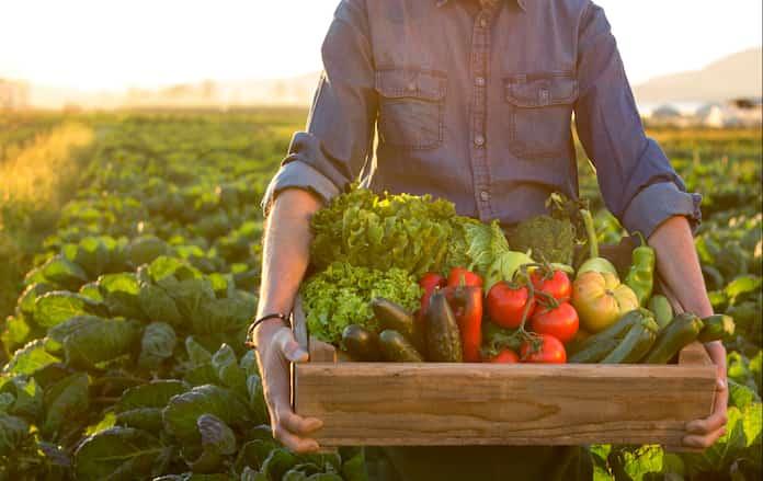 Yiyecek alışverişimizin karbon ayak izini nasıl azaltabiliriz?