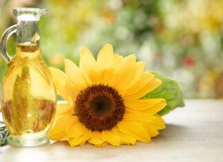 Bitkisel yağlar sağlıklı mı, hangi yağ daha sağlıklı?