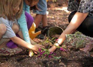 Çocuklara bahçe işleri nasıl öğretilir?